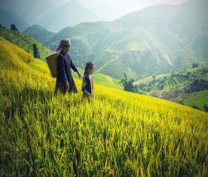 Voyage Bali En Famille